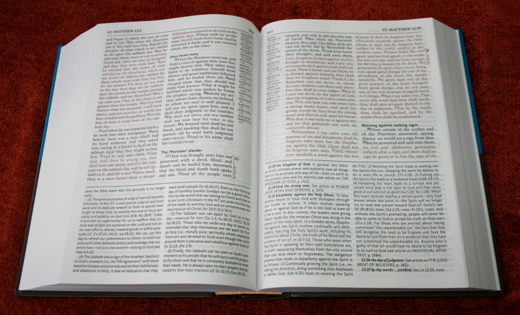 Hendrickson KJV Fire Bible 008