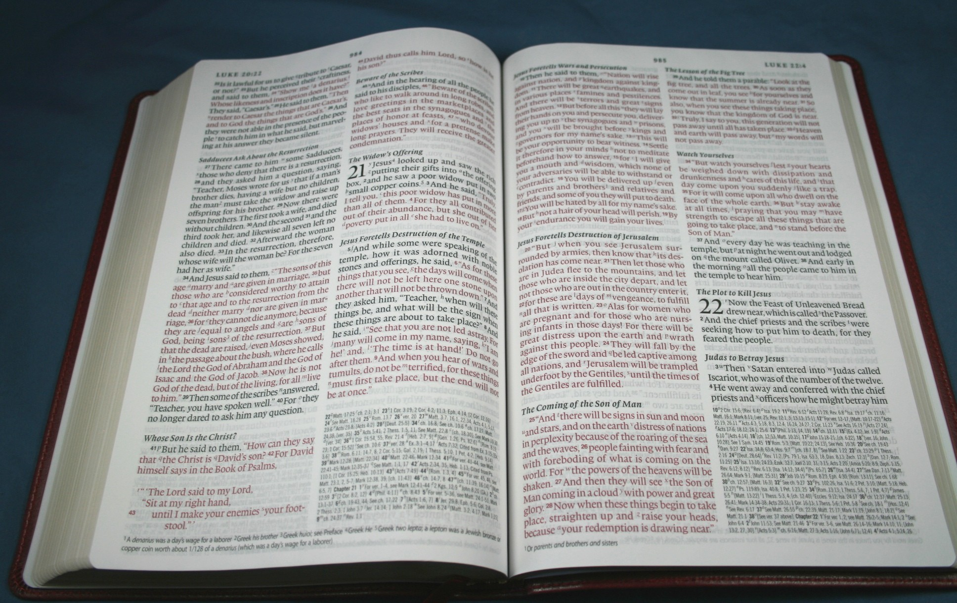 Crossway ESV Large Print Thinline Reference Bible 041
