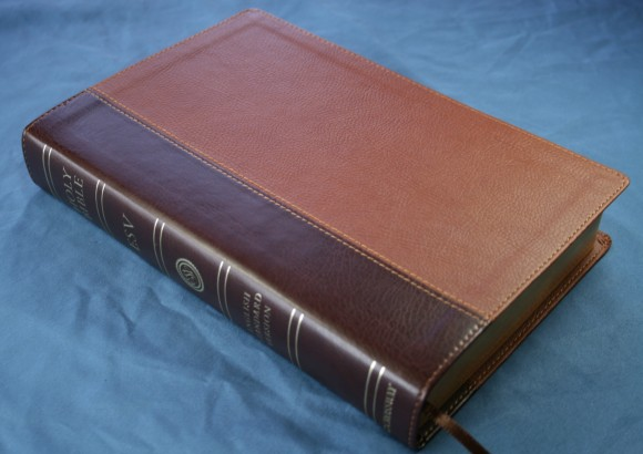 ESV Single Column Legacy Bible 001