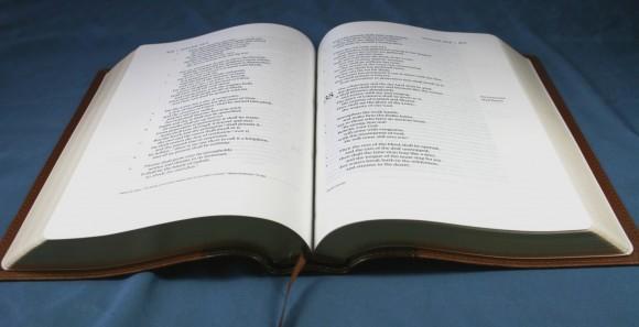 ESV Single Column Legacy Bible 008