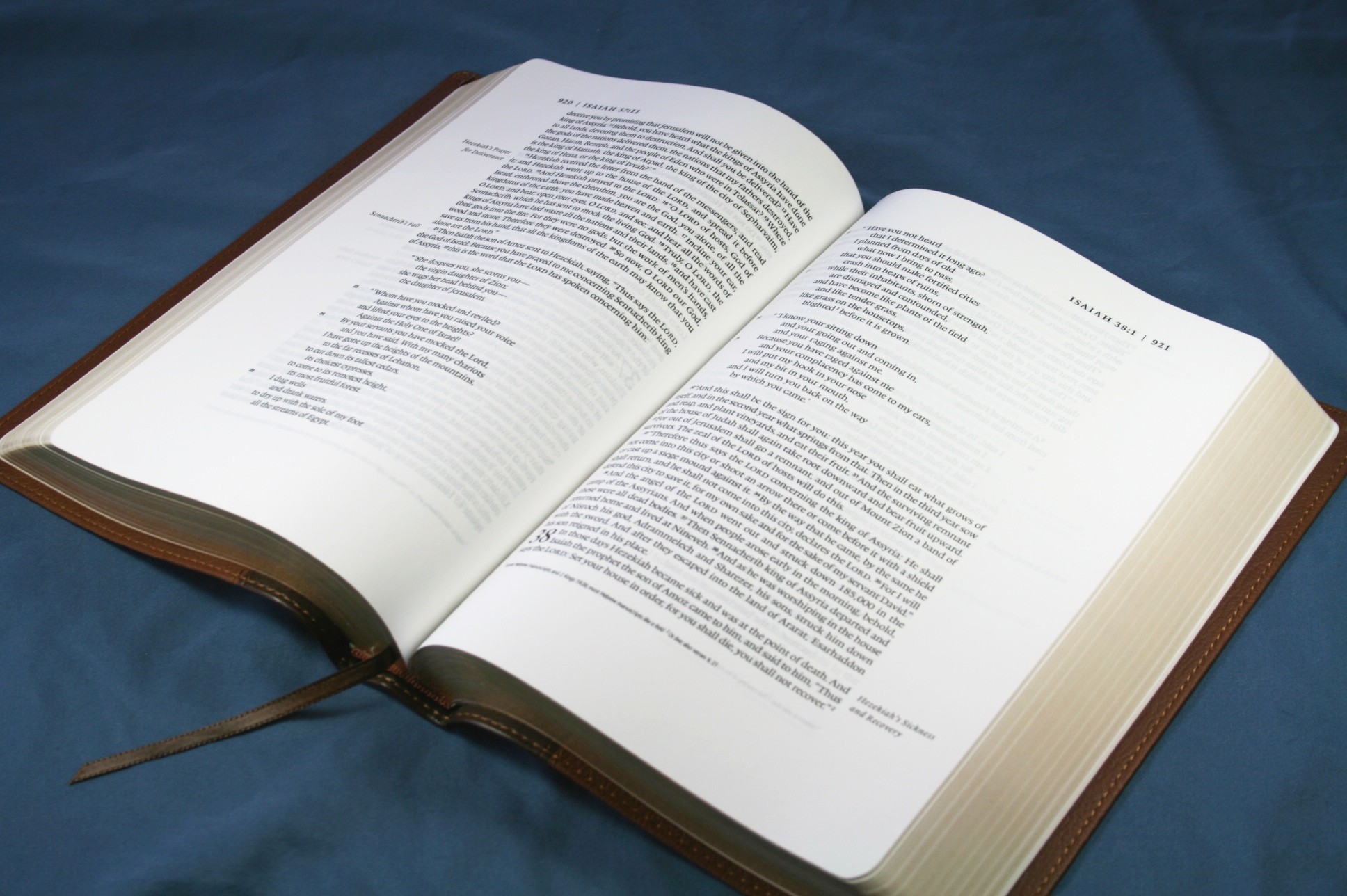 Favorite Bibles – Reading Bibles