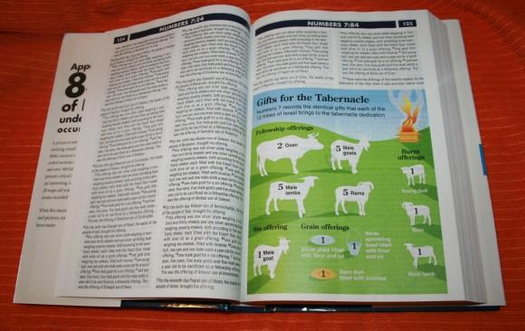 Zondervan NIV Quickview Bible 007