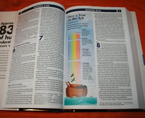 Zondervan NIV Quickview Bible 008