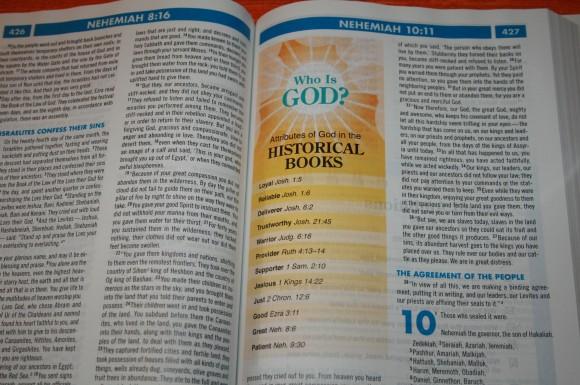 Zondervan NIV Quickview Bible 010