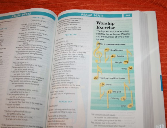 Zondervan NIV Quickview Bible 012