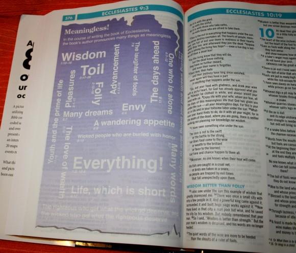 Zondervan NIV Quickview Bible 013