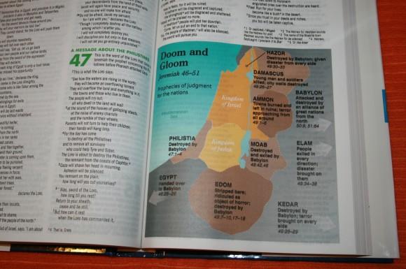 Zondervan NIV Quickview Bible 014