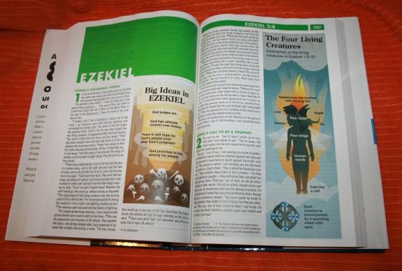 Zondervan NIV Quickview Bible 015