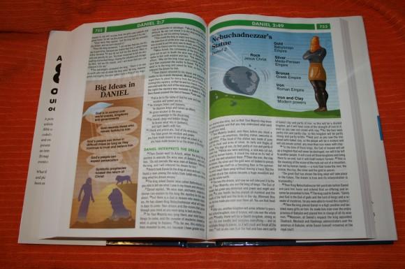 Zondervan NIV Quickview Bible 016