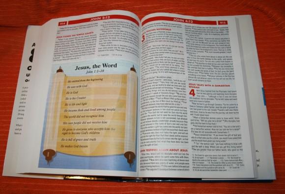 Zondervan NIV Quickview Bible 017
