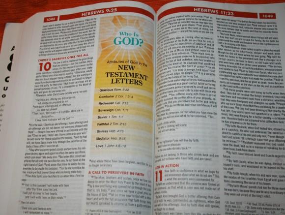 Zondervan NIV Quickview Bible 018