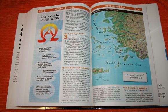 Zondervan NIV Quickview Bible 019