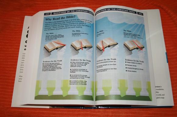 Zondervan NIV Quickview Bible 020