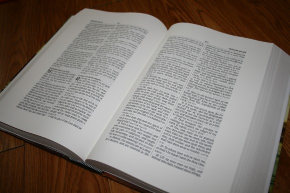 Hendrickson Large Print Wide Margin Bible KJV 008