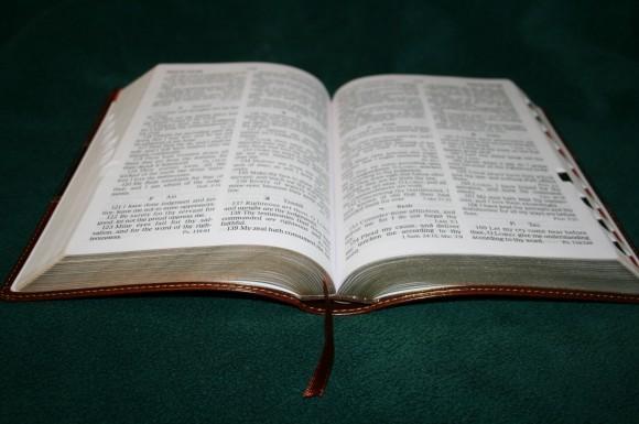 Holman Hand Size Giant Print Reference Bible KJV 039