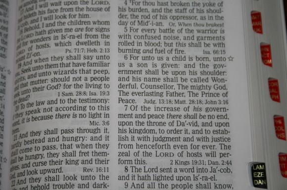 Holman Hand Size Giant Print Reference Bible KJV 043