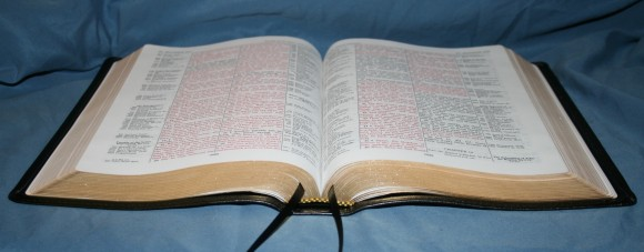 LCBP Thompson Chain Reference Bible 061