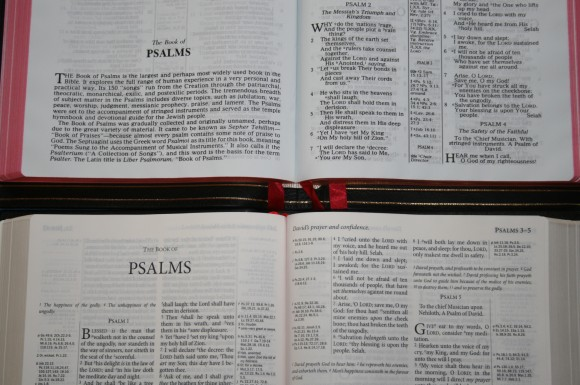 Allan New King James Version Classic Reference Edition Black Hig 058