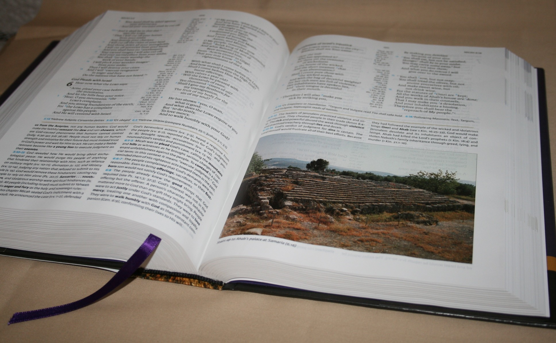 The Believer's Study Bible: New King James Version: W. A ...