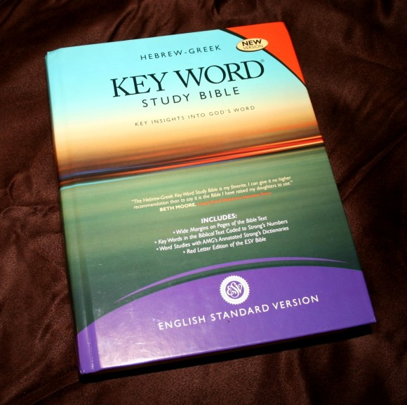 Hebrew-Greek Key Word Study Bible ESV 002