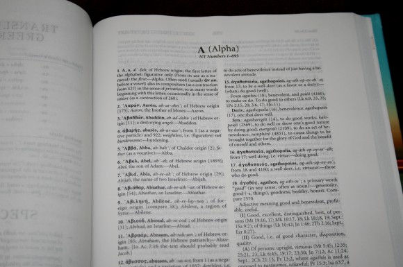 Hebrew-Greek Key Word Study Bible ESV 024
