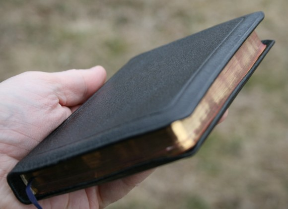 American Bible Society Ruby KJV 004