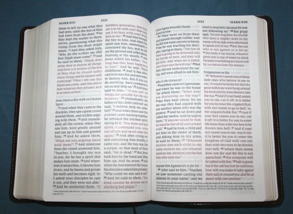 Crossway ESV Large Print Personal Size Bible 013
