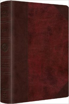 ESV Readers Bible