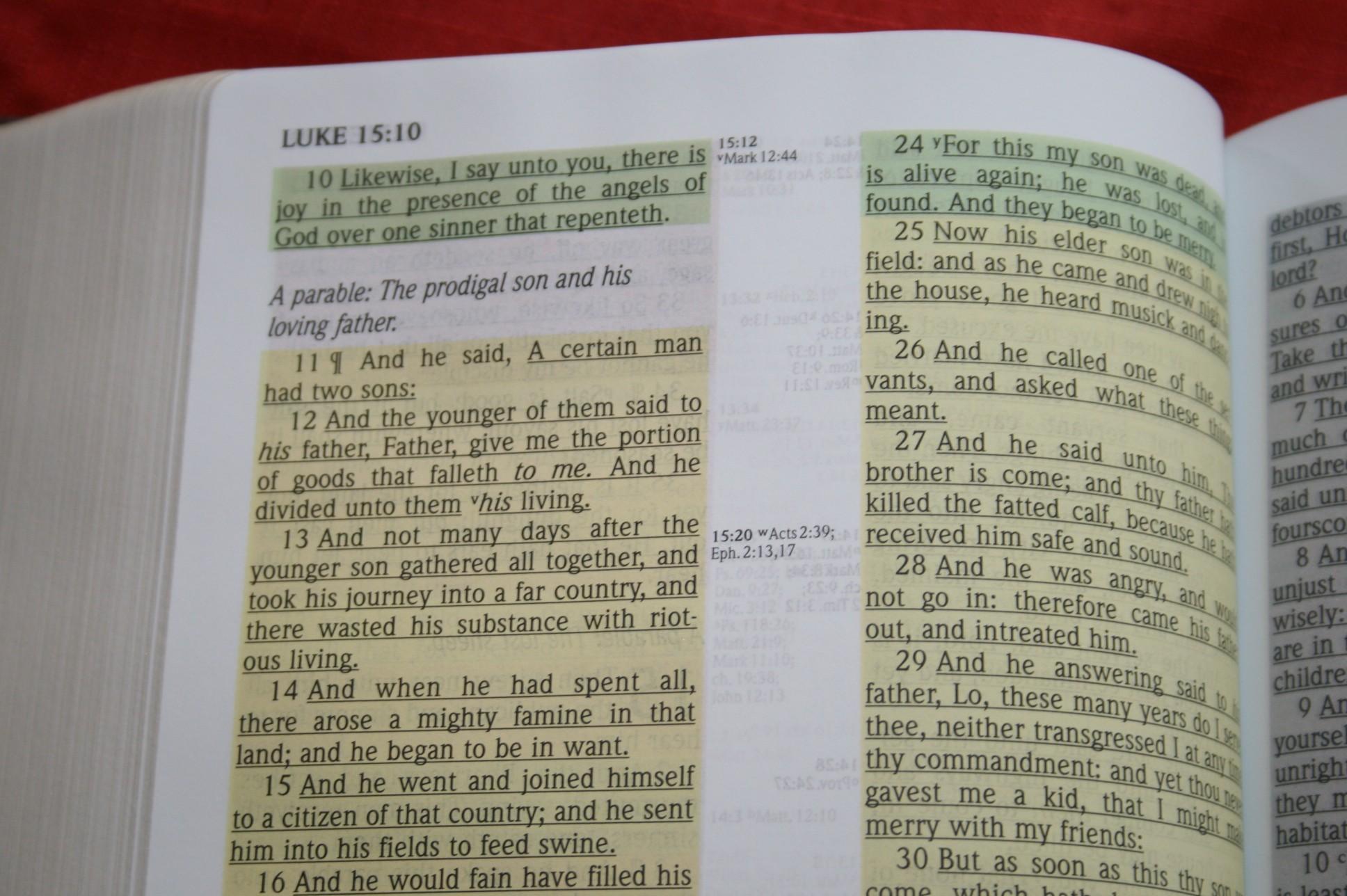 KJV Study Bible Large Print | eBay