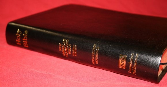 Foundation's Side Column Reference Bible NASB 020