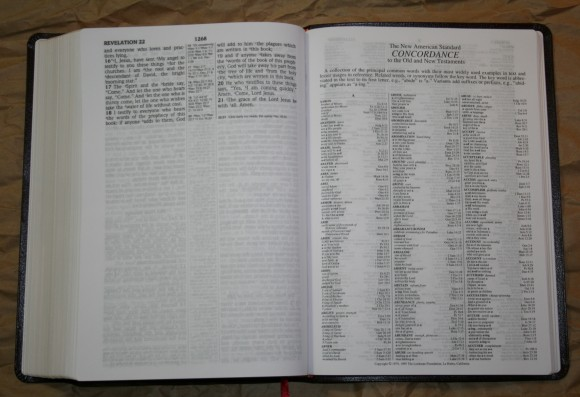 Foundation Large Print Ultrathin Reference Bible NASB 020