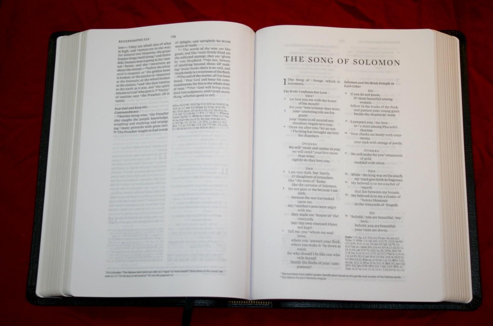 Crossways esv study bible