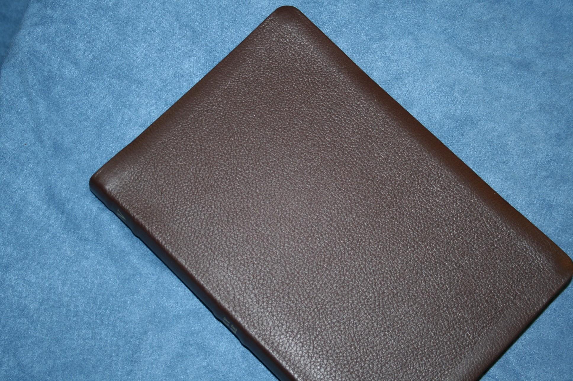 Holman Kjv Large Print Ultrathin Reference Bible Review