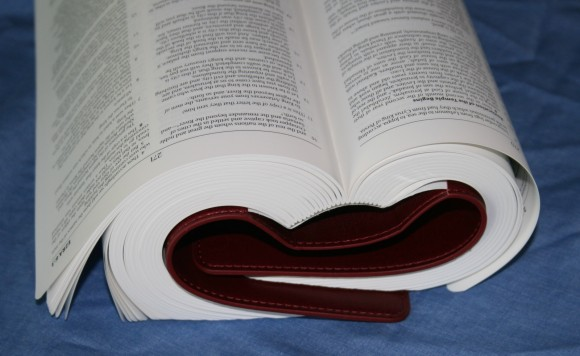 Waterproof Bible Cover from BMP 013