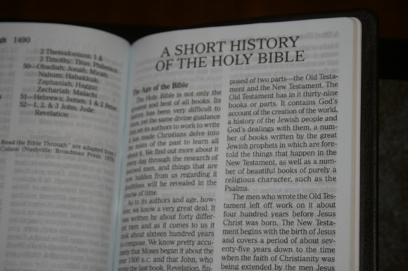 Holman Large Print Personal Size Reference Bible KJV in Brown Co 017