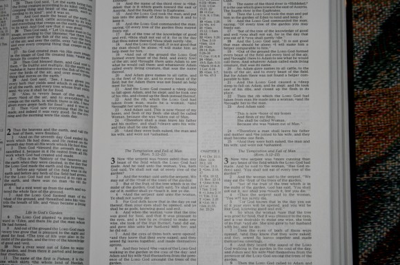 Thomas Nelson KJV NKJV Parallel Bible – Review 007