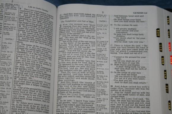 Holman NKJV Large Print Ultrathin Bible 013