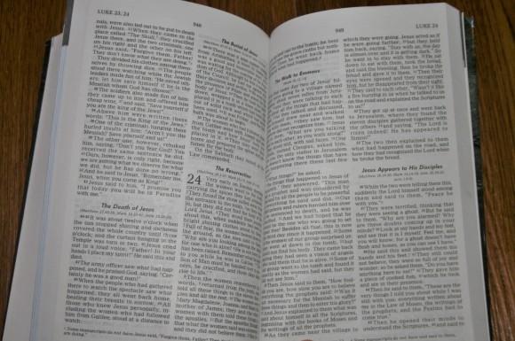 Mens Bible (5)