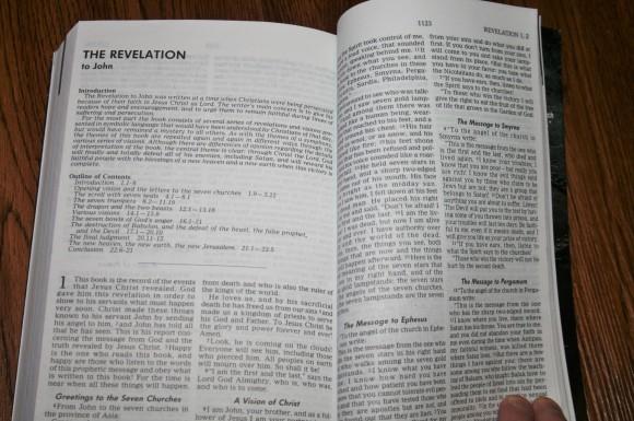 Mens Bible (6)