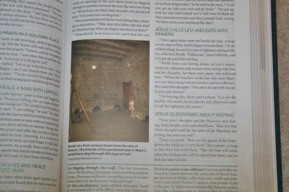 Zondervan First-Century Study Bible (18)