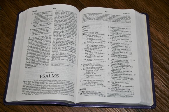 nelson nkjv personal size giant print reference bible