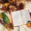 Happy Thanksgiving from Bible Buying Guide