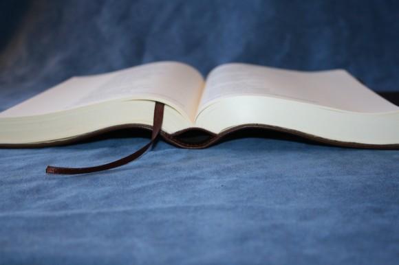 NIV Journal Edition (11)