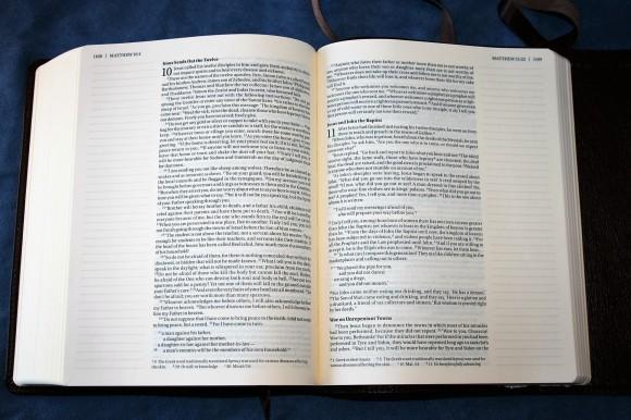 NIV Journal Edition (15)