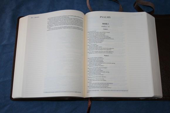 NIV Journal Edition (18)