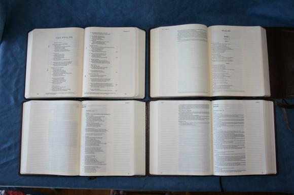 NIV Journal Edition (21)