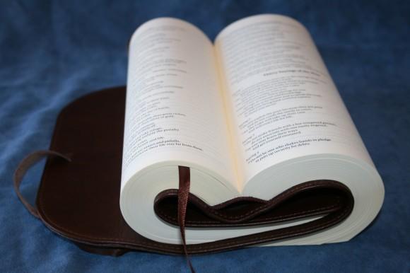 NIV Journal Edition (7)