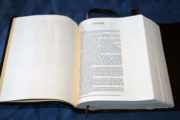 NIV Journal Edition (8)