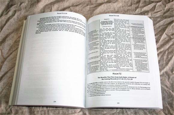 The Preacher's Outline & Sermon Bible - Psalms Part 2 (11)