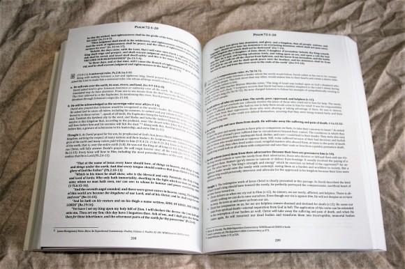 The Preacher's Outline & Sermon Bible - Psalms Part 2 (13)